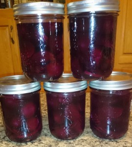 Jars of pickled beets.